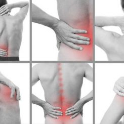 Muscle & Joint Pain I Ayurvedic Treatment
